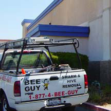 Los Angeles Bee Removal Guys Service Truck